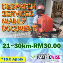 Despatch Services-Mainly Document (21~30km)